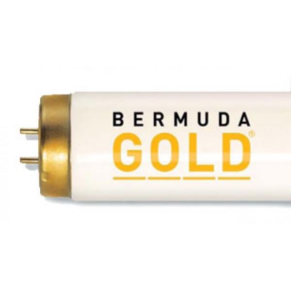Lampa Bermuda Gold 800 R 33/160